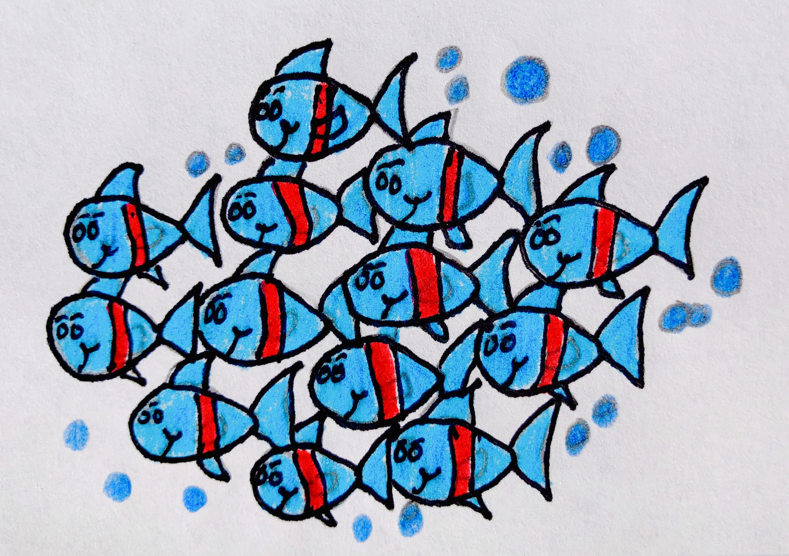 Drawing of a school of fish, red and blue striped from the children's story, The Very Brave Little Fish.