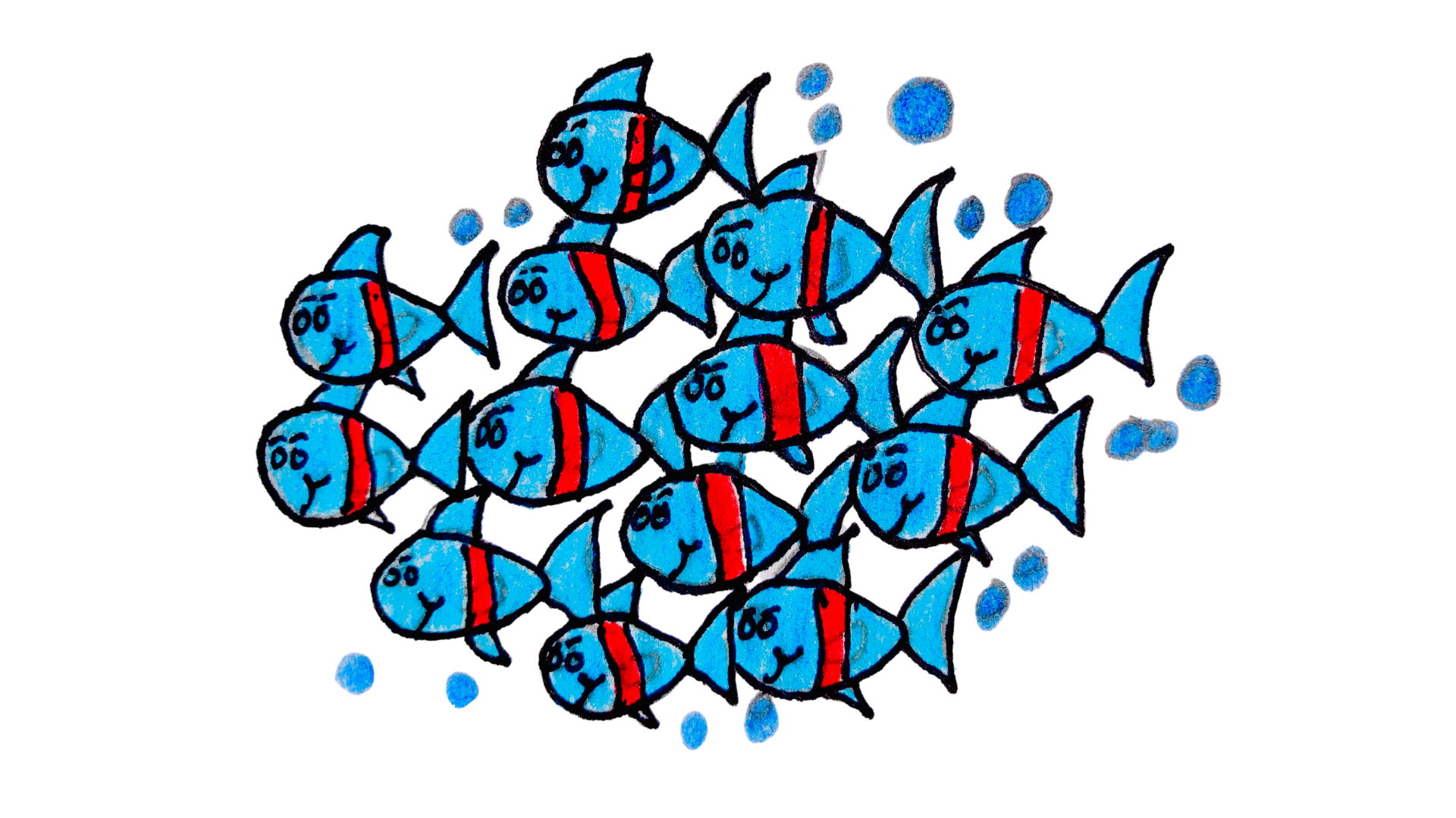 School of fish in the children's story, The Very Brave Little Fish.