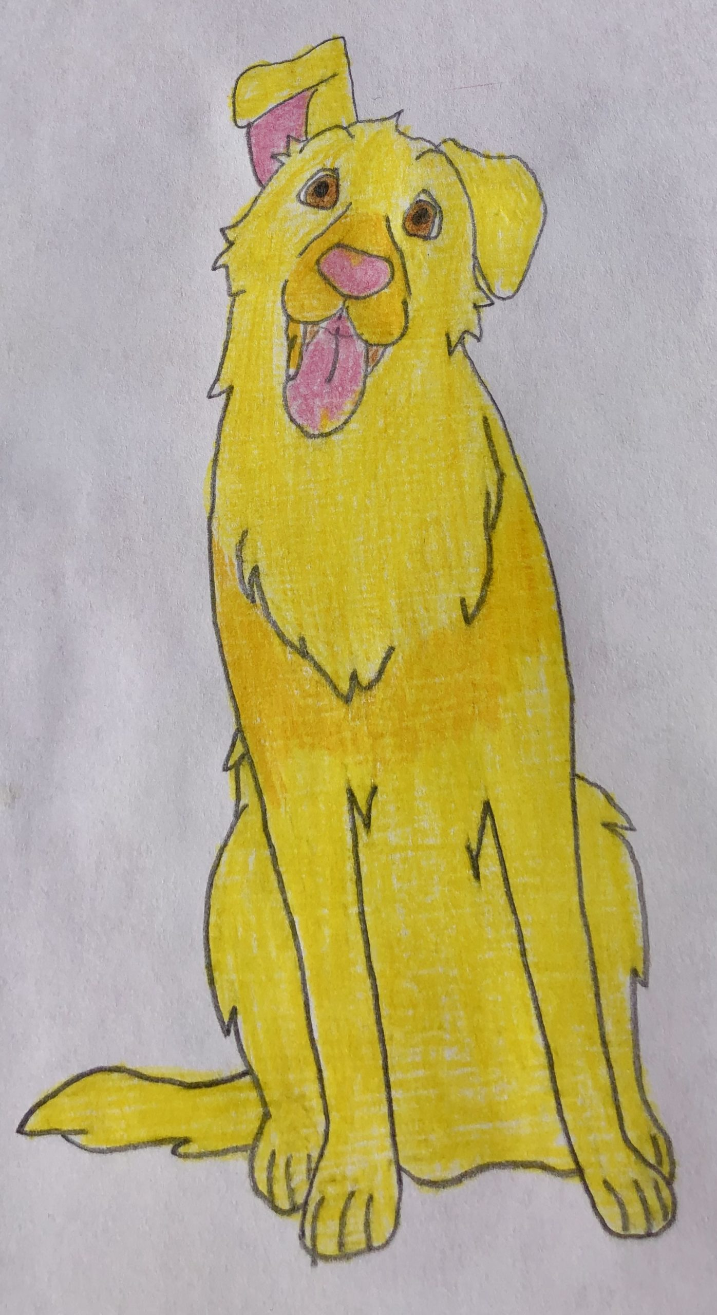 Golden retriever dog, Lucy, with one ear cocked up from the mystery story for kids, The Case of the Missing Puppy.