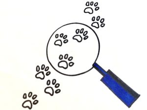 A blue magnifying glass on some dog tracks for the mystery story for kids.