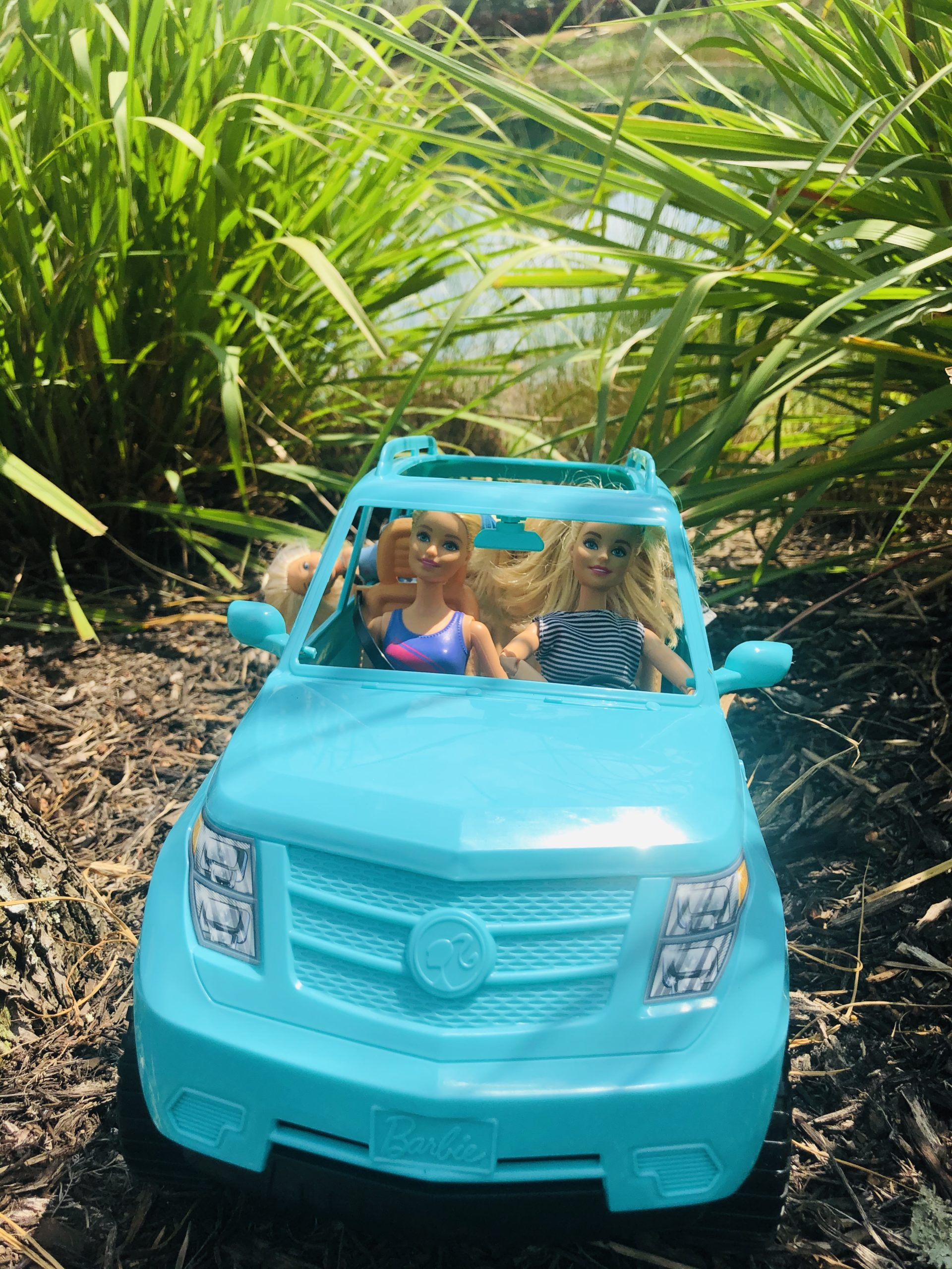 Teal Barbie Jeep with 2 Barbie dolls and 2 Chelsea Dolls in it. Background is a jungle.
