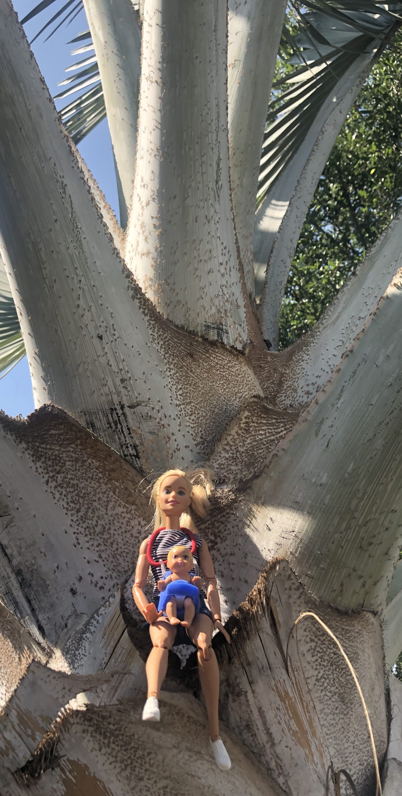 Barbie and a baby in a huge tree for the Barbie children's story.