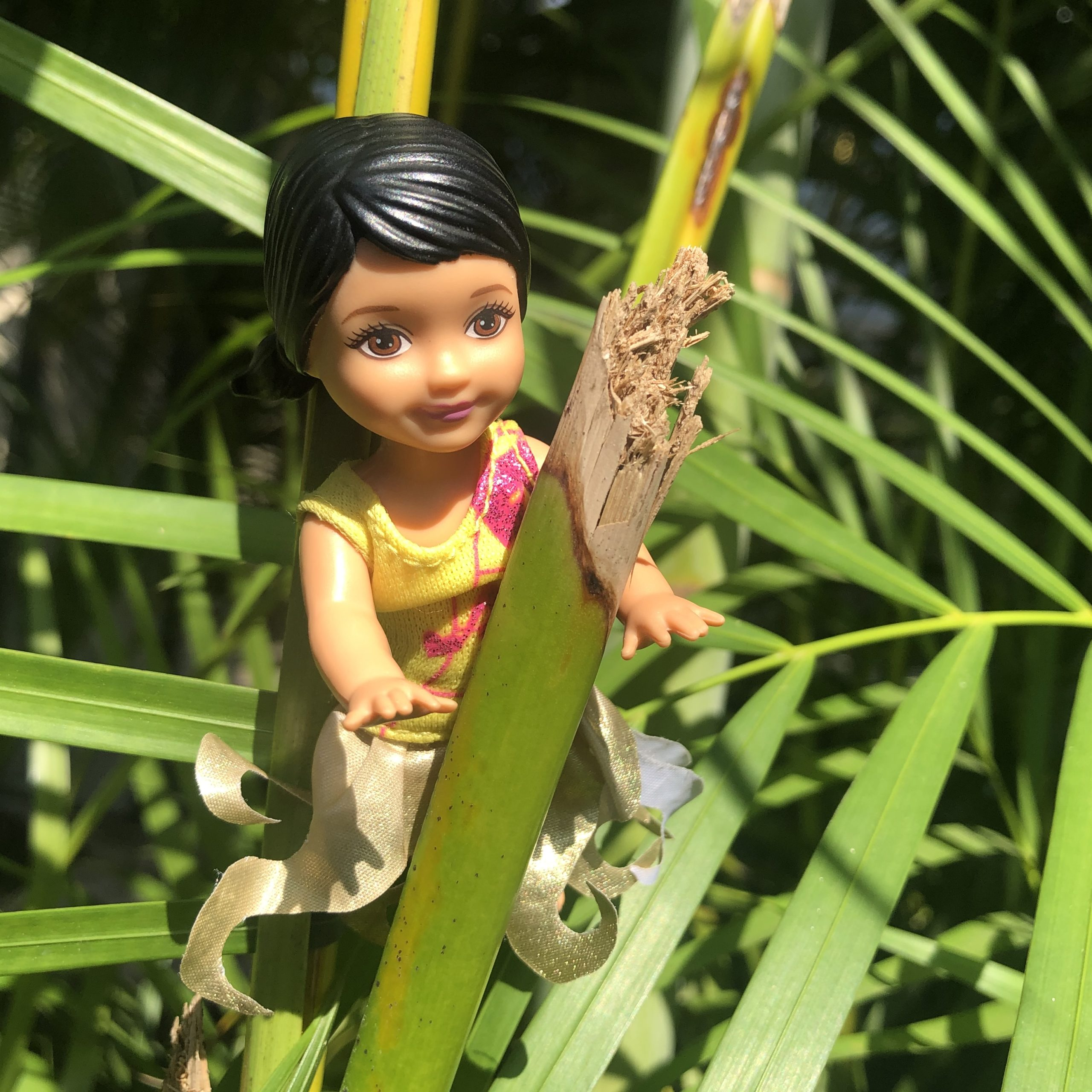 A dark haired Barbie baby in a tree for the Barbie Story for Kids, Hiking in Costa Rica.