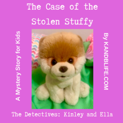 A Pomeranian stuffed animal sitting on a lime green blanket, for this mystery story for kids, The Case of the Stolen Stuffy.
