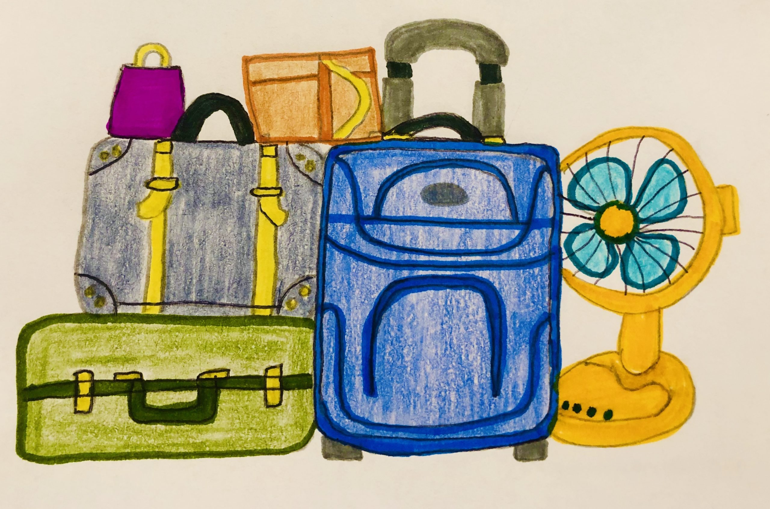 5 pieces of luggage and a fan for this story for kids.