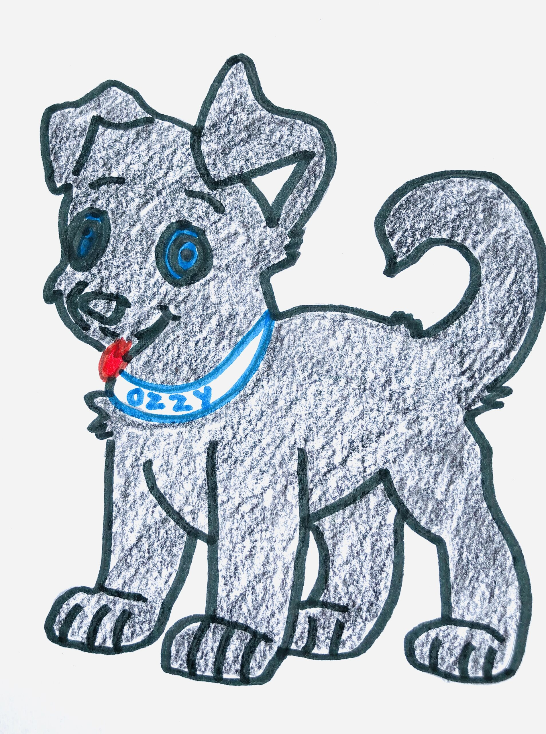 A black dog for the mystery story, The Case of the Missing Chips.