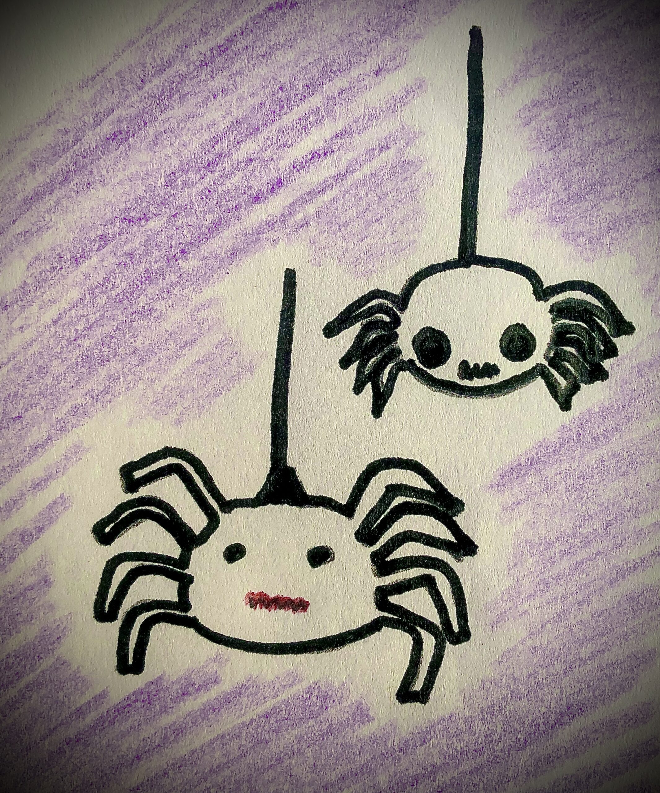 Drawing of 2 black spiders, with a purple background for the detective story.
