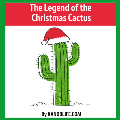 A cactus wearing a Santa hat for the Christmas Story, The Legend of the Christmas Cactus