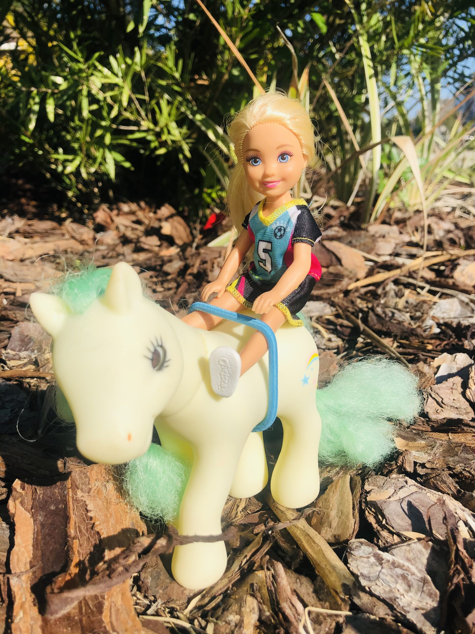 A Chelsea Doll with a horse.