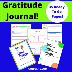 My 5 Little Things Grateful Journal